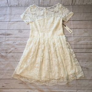 NWT BB Dakota White Lace Dress